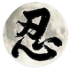 Logo ninjutsushop com