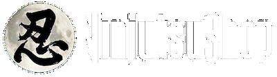 Nouveau logo ninjutsushop com