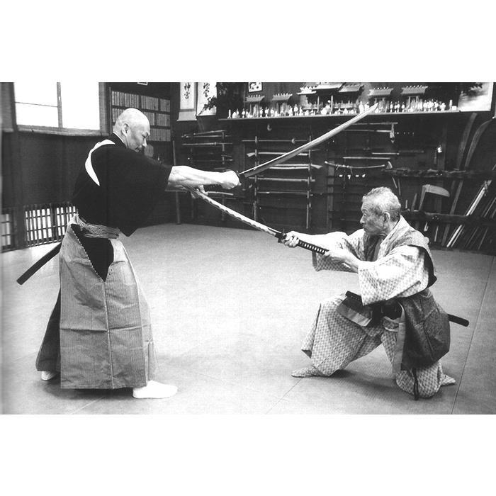 Happo Biken jutsu par Maitre Hatsumi