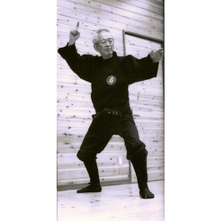 Maitre Hatsumi Kamae